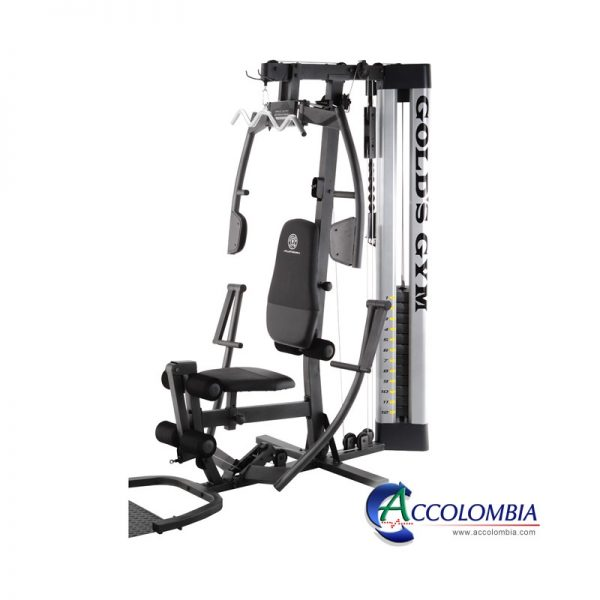 Forro Funda MULTIGIMNASIO PLATINUM GOLDS GYM